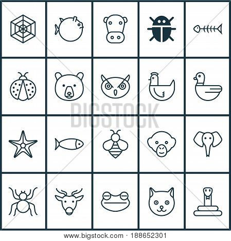 Zoo Icons Set. Collection Of Toad, Butterflyfish, Trunked Animal And Other Elements. Also Includes Symbols Such As Deer, Spider, Sea.