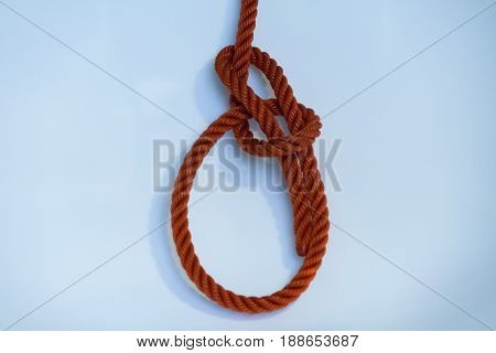 Bowline 1 of 10 most useful knot