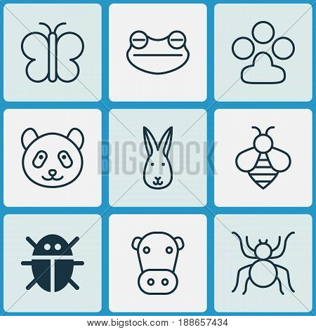 Nature Icons Set. Collection Of Spider, Kine, Bear And Other Elements. Also Includes Symbols Such As Panda, Butterfly, Arachnid.