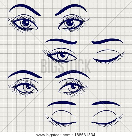 Ballpoint pen hand drawn female eyes. Vector open and closed eyes on notebook page