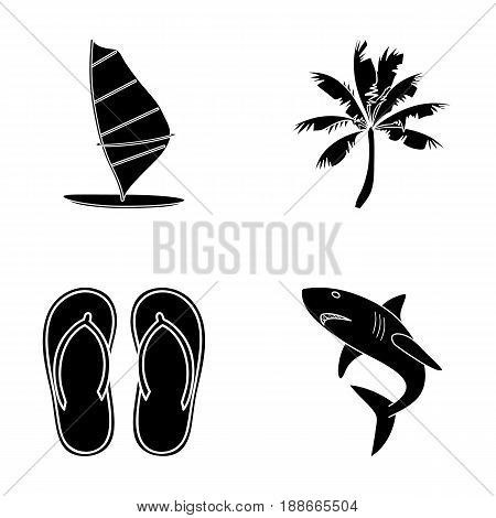 Board with a sail, a palm tree on the shore, slippers, a white shark. Surfing set collection icons in black style vector symbol stock illustration .