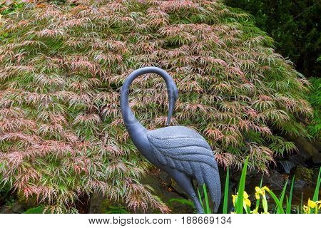 Bronze crane statue sculpture by Red Japanese Maple Tree in home garden backyard