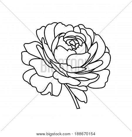 Black rose, flower rose, graphic embroidery rose, flower ebroidery rose, fabric embroidery rose, lace embroidery rose. Vector.