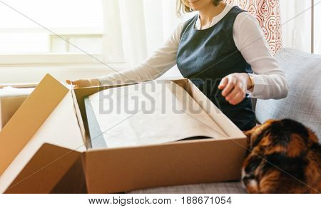 Curious cat helping young beautiful woman on living room sofa looks happy as she unpacks unbox cardboard box parcel containing new beautiful fashion clothes