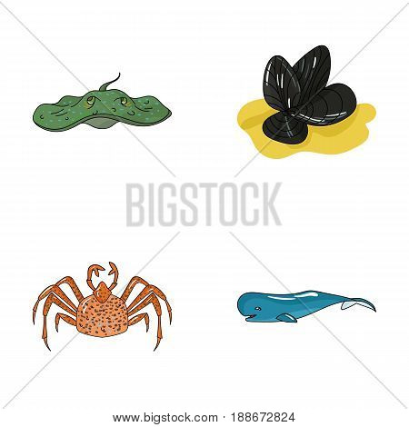 Electric ramp, mussels, crab, sperm whale.Sea animals set collection icons in cartoon style vector symbol stock illustration .