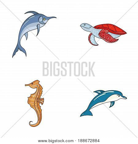 Merlin, turtle and other species.Sea animals set collection icons in cartoon style vector symbol stock illustration .