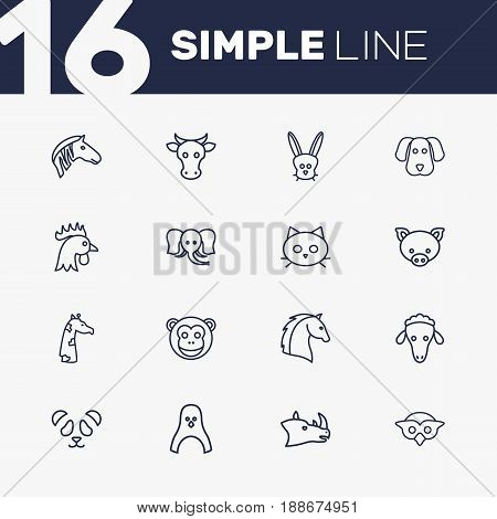 Set Of 16 Zoology Outline Icons Set.Collection Of Horse, Cat, Elephant And Other Elements.