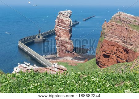 Cliff named Lange Anna at western point of island Helgoland Germany