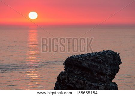 Beautiful sunset at most western point of German island Helgoland near a cliff named lange Anna