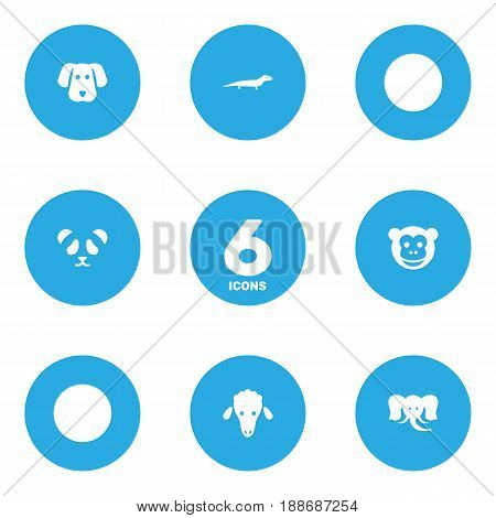 Set Of 6 Zoo Icons Set.Collection Of Ape, Trunked Animal, Bear And Other Elements.