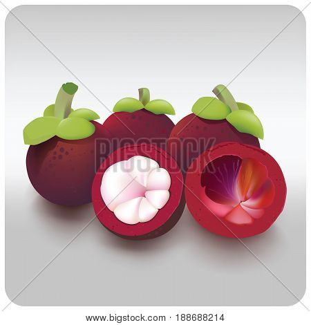 In Thailand mangosteen is considered to be the Queen of fruit.The effect is to eat each other in the summer of the year.