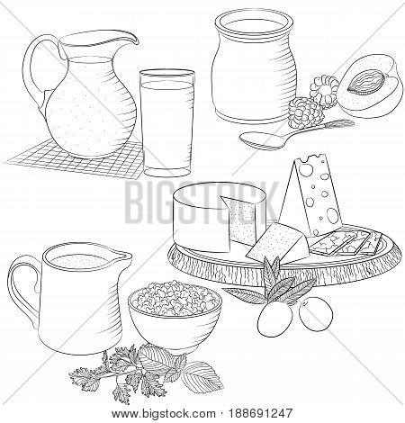 Vector line art illustration with food. Set with various dairy products. Illustration for menu cookbook or coloring book. Sketch isolated on white background