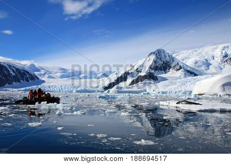Leopard seal resting on ice floe, watched by tourists, Antarctic peninsula