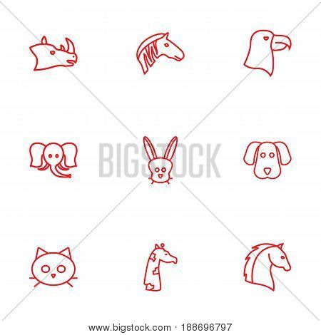 Set Of 9 Alive Outline Icons Set.Collection Of Rabbit, Rhino, Horse And Other Elements.