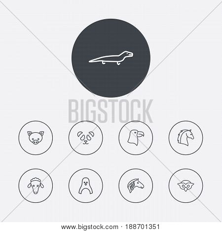 Set Of 9 Animal Outline Icons Set.Collection Of Lizard, Owl, Penguin And Other Elements.
