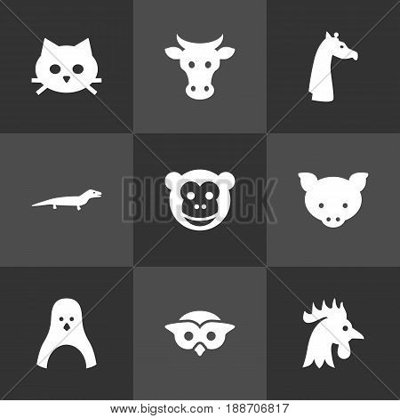 Set Of 9 Zoo Icons Set.Collection Of Rooster, Kine, Hog And Other Elements.