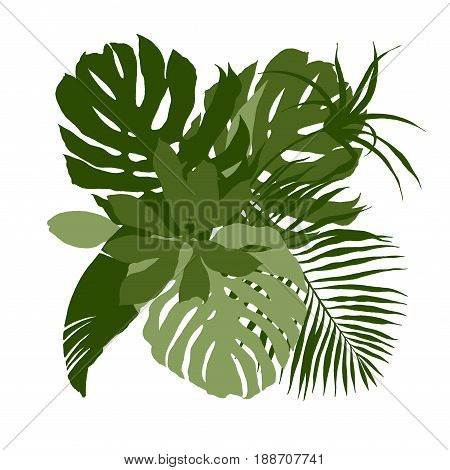 Green composition with plain tropical leaves, hand drawn