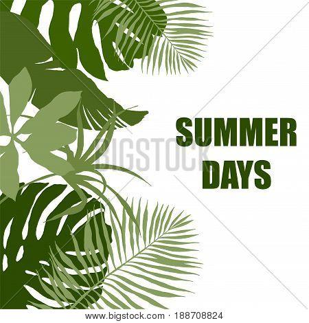 Side border, plain green tropical leaves, hand drawn