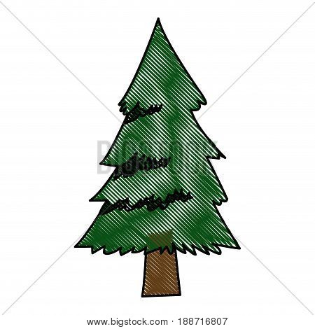 pine tree foliage trunk forest vegetation icon vector illustration