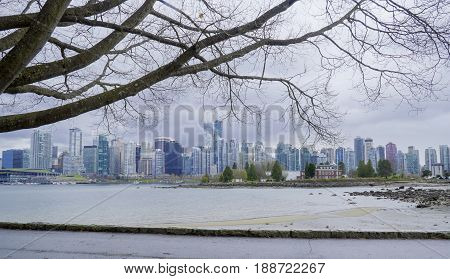 Stanley Park Vancouver with a beautiful view over the city -  CANADA