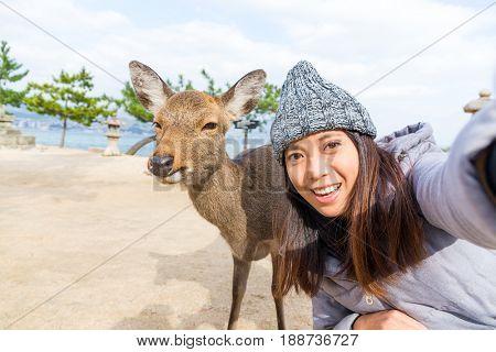 Woman taking photo with deer in miyajima