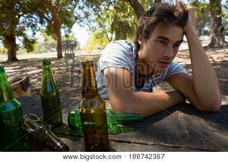 Unconscious drunken man relaxing in the park