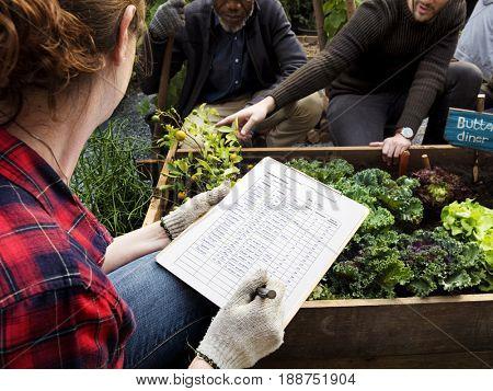 Farmer do a check list organic and non-gmo