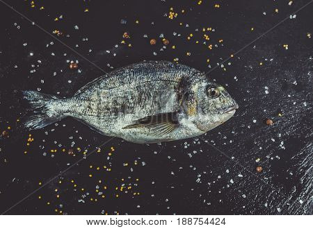 Raw fish dorado on black stone board. Top view, Spice salt and mustard, Healthy food. Copyspace.