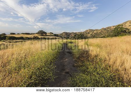 Morning meadow trail at Santa Susana State Historic Park in the San Fernando Valley area of Los Angeles, California.