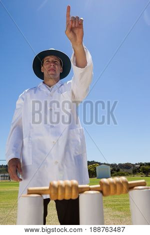 Confident umpire raising finger while standing behind stumps against clear sky