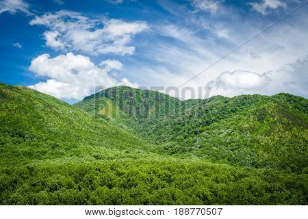 Summer landscape in the Smoky Mountains near Gatlinburg, Tennessee.