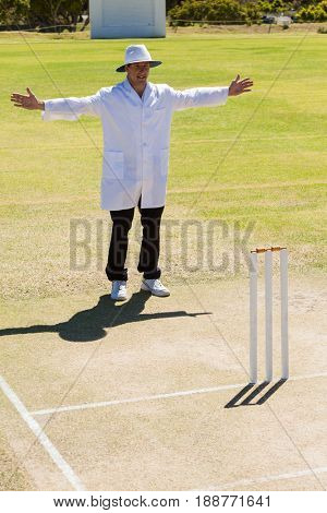 Cricket umpire signalling wide ball during match on sunny day