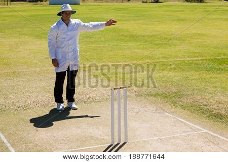 Cricket umpire signalling no ball during match on sunny day