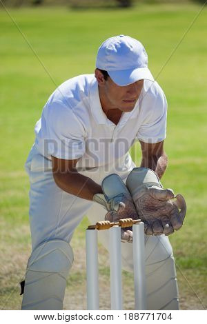 Concentrated wicketkeeper standing behind stumps on field during sunny day