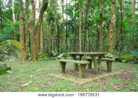 Picnic place in forest