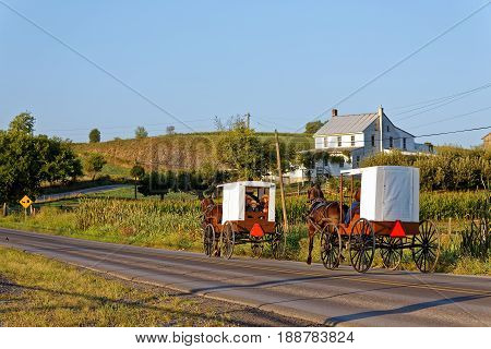 MILROY PENNSYLVANIA - September 4 2016: Amish families travel with horse and carriage on a winding rural road in Mifflin County Pennsylvania.