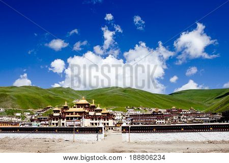 Potala palace in Lhasa Tibet with green mountain background