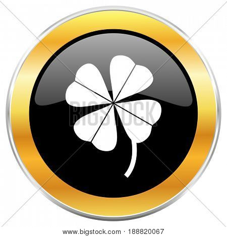 Four-leaf clover black web icon with golden border isolated on white background. Round glossy button.