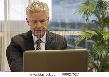 Caucasian businessman working on laptop