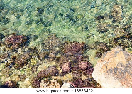 Colorful rocks with green moss in shallow sea water background