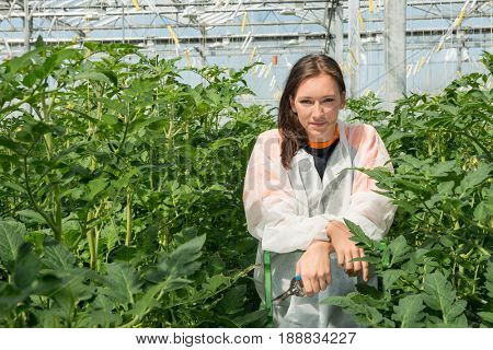 Confident Researcher Standing Amidst Tomato Plants In Greenhouse