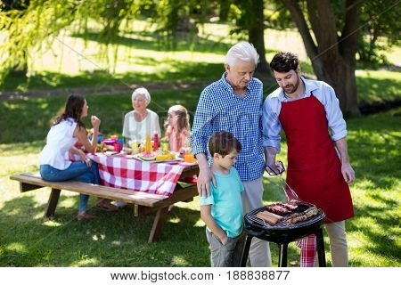 Grandfather, father and son barbequing in the park with family in background