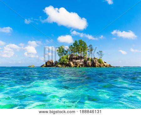 Summer Water Scene