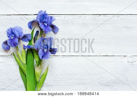 blue iris flowers over white wooden background. top view with copy space
