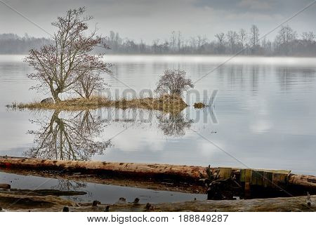 Fraser River Mist, British Columbia. Early morning calm on the Fraser River, British Columbia.