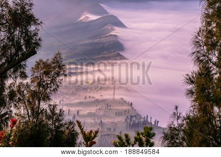 Beautiful foggy landscape of Cemara Lawang village near with Mount Bromo during sunrise with in Bromo Tengger Semeru National Park East Java Indonesia.