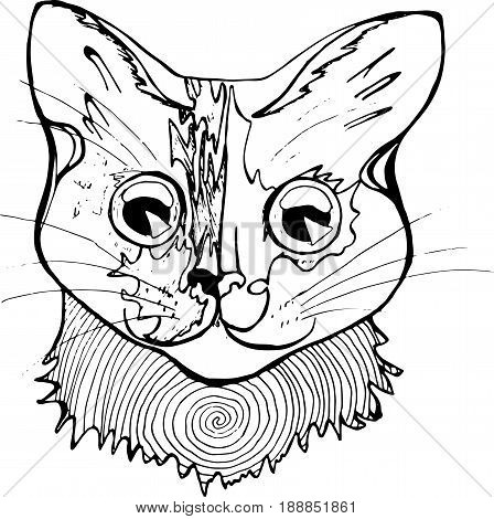 An illustration of a psychodelic cat. Black and white drawing of a cat.
