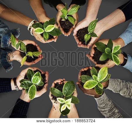 Diverse People Holding Plants