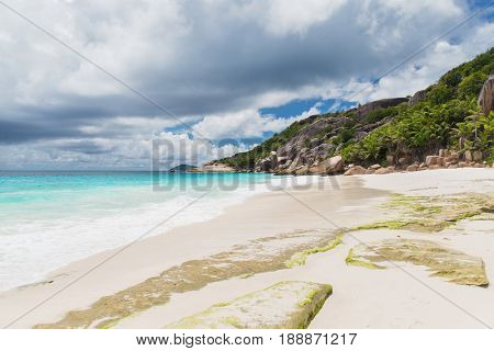 travel, seascape and nature concept - island beach in indian ocean on seychelles