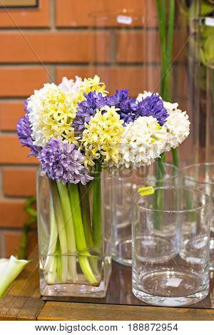Hyacinths In A Vase On A Table